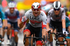 Tour de France 2020 - 107th Edition - 1st stage Nice - Nice 156 km - 29/08/2020 - Alexander Kristoff (NOR - UAE - Team Emirates) - photo POOL Vincent Kalut/PN/BettiniPhoto�2020