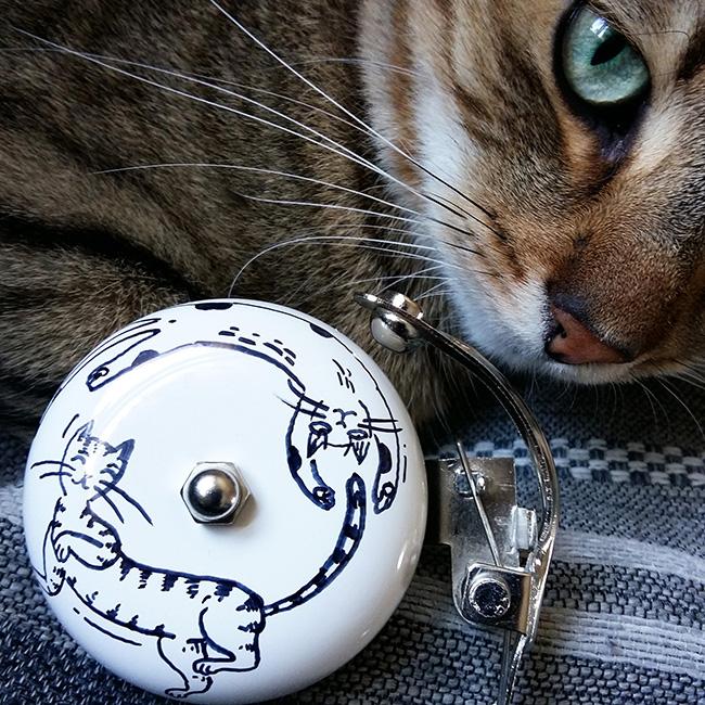 cats_rysio_kwadrat